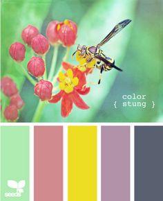 Palette-able