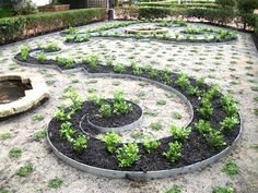 What a gorgeous spiral garden! Do you love this like we do? Thanks to Orbit Group for this great photo.  To see more, click here: www.hipages.com.au/orbitgroup