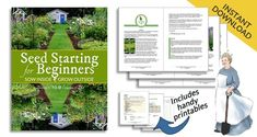 Seed Starting for Beginners: Sow Inside Grow Outside by Melissa J. Will Avocado Plant, Avocado Seed, Growing Orchids, Growing Plants, Container Plants, Container Gardening, Growing An Avocado Tree, Succulent Wall Planter, Garden Balls