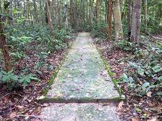 Image result for meditation-walking