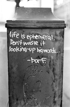 life is ephemeral. don't waste it looking up big words, graffiti, #GetSome, paint, art, getsome, artist, quotes, photo, get some, photography, black and white, vandals