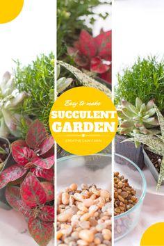 Easy to Make Mini Indoor Succulent Garden   CreativeCainCabin.com