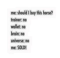 Should I Buy This Horse...