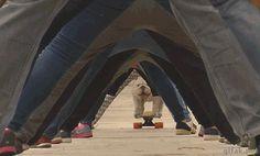 Bulldog on a skateboard gif - Haha, I love this!