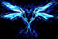 Blue Phoenix Love by punkisstillcool on DeviantArt