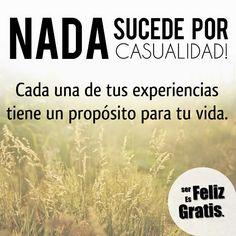 Ser Feliz es Gratis: Lo que niegas te somete, lo que aceptas te transfo...