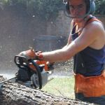 Tree Surgeons, Garden Maintenance, 20 Years, Outdoor Power Equipment, Landscaping, Design, Yard Maintenance, Yard Landscaping