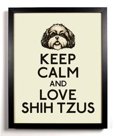 Keep Calm and Love Shih Tzus  Shih Tzu 8 x by KeepCalmAndStayGold, $8.99