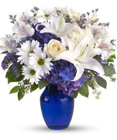 Beautiful In Blue-In this arrangement, the serenity of the color blue along with the purity of intention symbolized by white will let the family know you are sending your calm strength to them during these difficult times. Beautiful blooms such as blue hydrangea, crème roses, white lilies and alstroemeria along with white chrysanthemums, eucalyptus, limonium and more are beautifully arranged in a dazzling cobalt blue vase. #SympathyFlowers #AlsFlorist #HollywoodFlorist