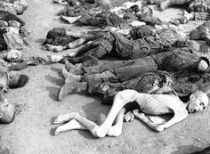 World War 2 Holocaust Memorial Day (Nazi Concentration Camp Pictures) World History, World War Ii, Jewish History, Holocaust Memorial Day, Lest We Forget, Wwii, The Past, Horror, Germany