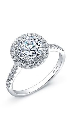 Engagement ring inspiration: Round-cut, halo and pave.