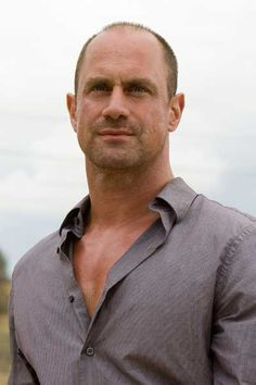 Christopher Meloni as Taylor