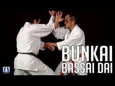 Bunkai Bassai Dai - KARATE - Bernard Bilicki - YouTube Kata Shotokan, Shotokan Karate, Kyokushin, Karate Kata, Martial Arts Workout, Muscular, Self Defense, Cat Memes, Mma