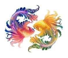 CATHLEEN DANIELS  -  oh mY GOD, I WANT IT Watercolor Fish, Watercolor Paintings, Pisces Tattoos, Desenho Tattoo, Beautiful Fish, Fish Art, Silk Painting, Goldfish, Art Reference