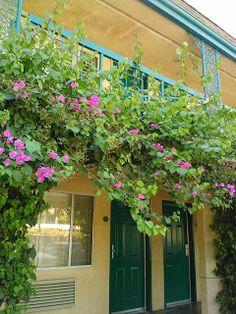 About candy cane inn on pinterest hotels in anaheim anaheim hotels