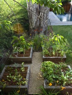 building a raised bed can be much easier than mulching your entire backyard or digging through - Best Raised Garden Beds