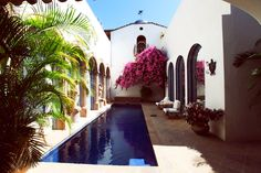 pool & bougainvillea