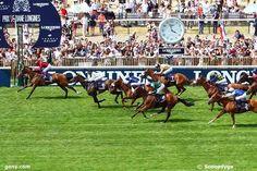 arrivée du prix de diane a chantilly 3 6 16 8 7 - demain lundi 15 juin 2015 quinté de vichy 17 chevaux trot attelée