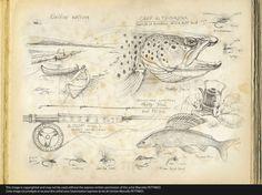 n°47-kaitum-flyfishing