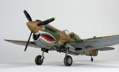 1/48 scale Hasegawa P-40E Warhawk