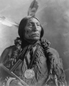 Chief Wolf Robe Nickle 1904 Vintage 8x10 Reprint Of Old Photo