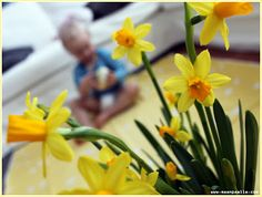 Pääsiäisen odotusta kiirastorstaina, Easter 2013