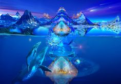 Voyage to Infinity with Whales and Dragons - DVD - Gallery2