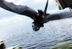 Ending of How to Train Your Dragon / Hiccup Haddock & Toothless, Dragon Racing