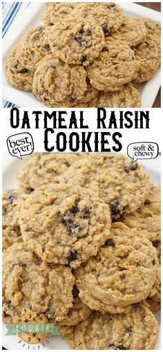 Oatmeal Raisin Cookies that truly are the BEST EVER! Oatmeal, raisins, pudding mix & spices combine in most delicious, soft & chewy cookies. If you've never liked Oatmeal Raisin Cookies, you've got to TRY THIS RECIPE! Pudding Cookies, Oat Cookies, Galletas Cookies, Yummy Cookies, Cookies Et Biscuits, Cheese Cookies, Coconut Cookies, Soft Oatmeal Raisin Cookies, Oatmeal Cookie Recipes