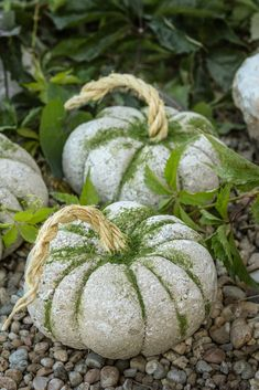 idées de citrouille Here's a fun Pumpkin idea for your fall decor! Of all the pumpkin ideas I would have to say these concrete pumpkins really stuck to me. They are super versatile and take under an hour Diy Projects For Fall, Fall Crafts, Diy Crafts, Diy Pumpkin, Pumpkin Crafts, Pumpkin Ideas, Concrete Crafts, Concrete Art, Concrete Projects