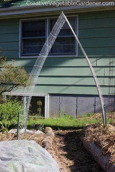 Easy and Beautiful DIY Garden Trellis Creative Vegetable Gardener:Easy & Beautiful DIY Garden Trelli Garden Arch Trellis, Vine Trellis, Garden Arbor, Diy Garden, Trellis Ideas, Garden Shop, Garden Club, Garden Landscaping, Starting Seeds Indoors