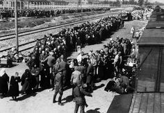 Auschwitz la selection