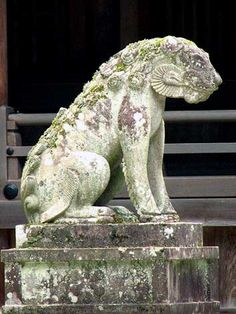 狼-8 飛騨高山のオオカミ Stone Lion, Sculptures, Lion Sculpture, Fu Dog, Visual Diary, Japan Art, Lions, Wolf, Creatures