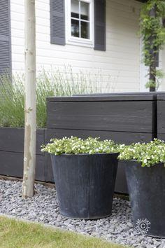 New garden fence black planters Ideas Back Gardens, Outdoor Gardens, Dream Garden, Home And Garden, Landscape Design, Garden Design, Black Planters, Garden Spaces, Garden Planters