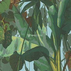 Dekora Natur 6 – AS-Creation VinylWallpaper No. 958981 in Green now at wallcover.com! ✔ Fast and secure Delivery ✔ Free Shipping for an Order Value over 200€
