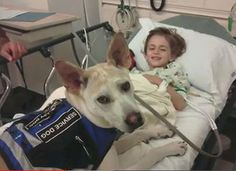 """This dog was on the """"kill list"""" at a shelter. Luckily, it was adopted & now acts as a seizure-alert dog for the youngster in the family. From: Marlo Thomas: Adopt A Shelter Dog. It Could Save Your Life."""