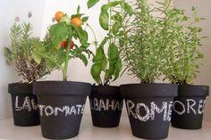 Small Garden In Home, Home Vegetable Garden, Huerta En Casa Ideas, Garden Paths, Herb Garden, Garden Shop, Painted Pots, Organic Gardening, Outdoor Gardens