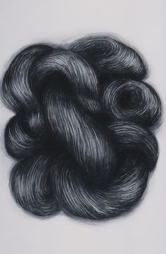 A beautiful hair drawing in charcoal by Alice Maher