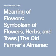 Meaning of Flowers: Symbolism of Flowers, Herbs, and Trees | The Old Farmer's Almanac