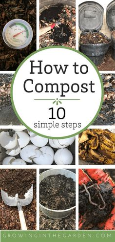 How to Compost: 10 Simple Steps Compost is gold for your garden. Step by step instructions to teach you how to compost plus a troubleshooting guide to help you along the way. Diy Gardening, Garden Compost, Veg Garden, Vegetable Garden Design, Gardening For Beginners, Organic Gardening, Vegetable Gardening, Container Gardening, Flower Gardening