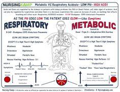 Metabolic Acidosis VS Respiratory Acidosis - All About Health Cardiac Nursing, Pharmacology Nursing, Nursing Assessment, Respiratory Acidosis, Respiratory Therapy, Respiratory Medications, Respiratory System, Acute Respiratory Failure, Pathophysiology Nursing
