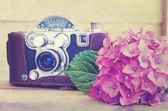 Vintage Camera Photograph  - Vintage Camera Fine Art Print