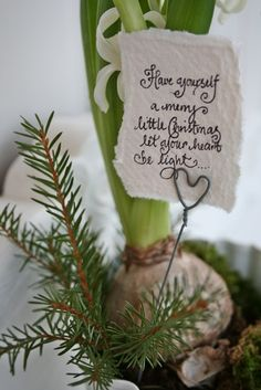 Cute note tucked into a bulb, flower or plant gift - Have yourself a merry little Christmas let your heart be light...