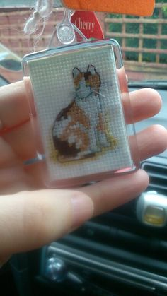 Another cat keyring