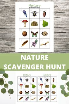 Fun printable for camping trips, nature walks, birthday parties or other outdoor activities. Camping Games Kids, Outdoor Games For Kids, Backyard For Kids, Camping With Kids, Outdoor Activities, Camping Ideas, Summer Camp Games, Indoor Games, Camping Checklist