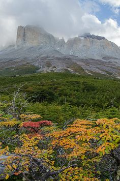Misty mountains -- Torres del Paine National Park, in Chile's Patagonia region. #travel #southamerica