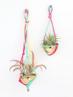 A Kailo Chic Life: Craft It - A Macrame Air Plant Hanger - made from easter eggs!