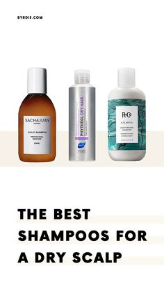 The best shampoos for dry scalp