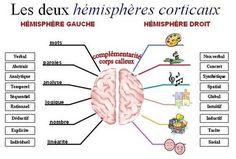 Brain Gym - Gestion mentale
