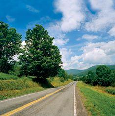 T - Road trip - Catskills    The road near Stony Creek Farm, in Walton, New York.